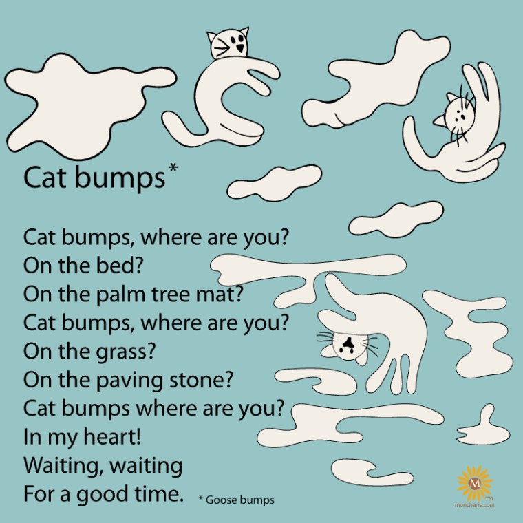 Cat-bumps-mundo-emilia-moncharis